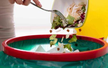 Comment limiter les gaspillages au restaurant
